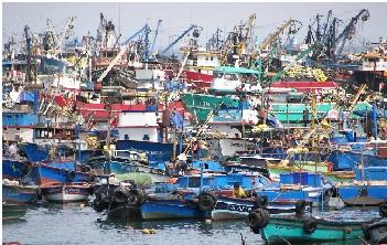 Gobierno peruano evalúa elevar cobro por derechos de pesca