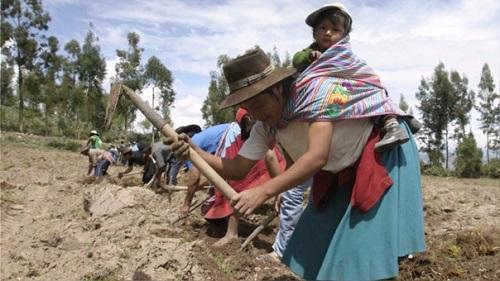 INEI: Pobreza en el Perú disminuyó 1.1%