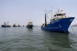 Gremio pesquero: la sostenibilidad de la pesquería para la pota es clave
