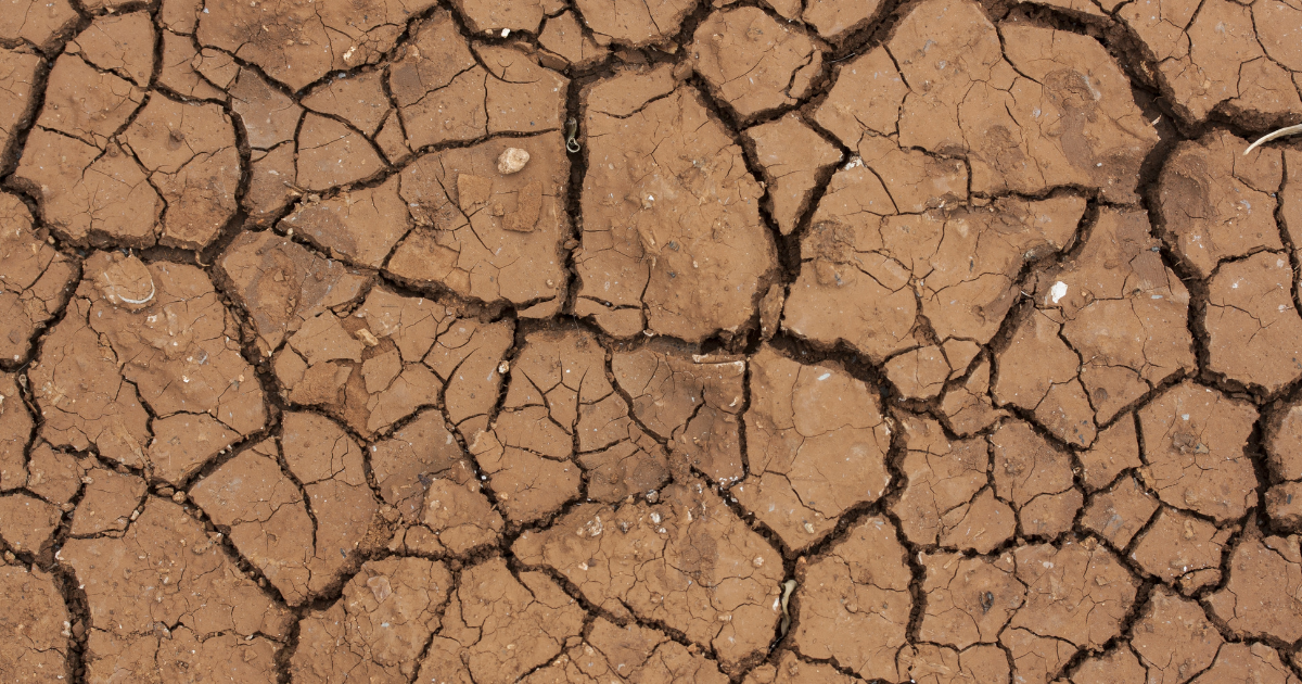 ¿QUÉ RELACIÓN HAY ENTRE EL BANCO CENTRAL Y EL CAMBIO CLIMÁTICO?